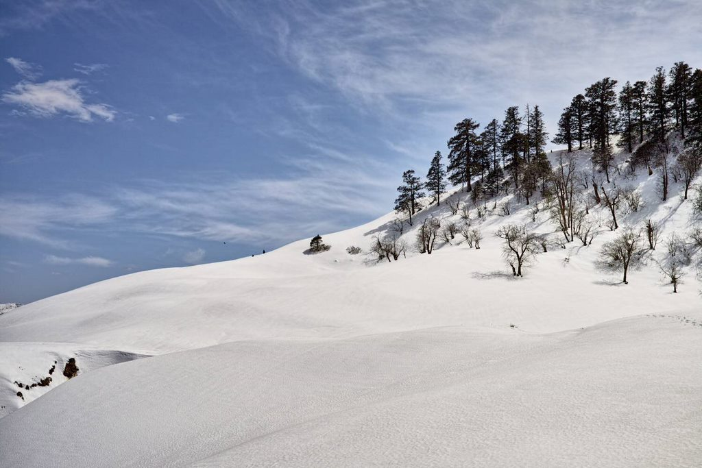 Winter trek to Dayara Bugyal (Uttrakhand)